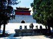 明楼及石五供,宝陵碑亭,古代名胜,绿树 文物保护区 景点