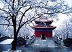 碑亭雪景,宝陵碑亭,古代名胜,雪景 亭子 树枝