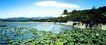 颐和园湖边景色,明陵幽景,古代名胜,