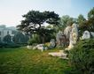 故宫内景0063,故宫内景,古代风景,假山 草地 树木