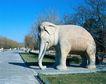 故宫内景0088,故宫内景,古代风景,参观 大象 古老