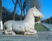 故宫内景0089,故宫内景,古代风景,马匹 姿势 表情