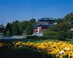 旅游景点0031,旅游景点,古代风景,花朵 花卉 绿化