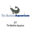 动物园、水族馆0024,动物园、水族馆,世界标识,077 汽泡 Aquarium