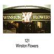 花店0038,花店,世界标识,121 Winston 花展
