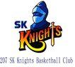 蓝球,野球0029,蓝球,野球,世界标识,SK Club 剑