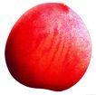 素材瓜果0271,素材瓜果,农业,通红 农产品 绿色食品