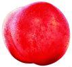 素材瓜果0272,素材瓜果,农业,光泽 天然 健康
