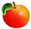 素材瓜果0275,素材瓜果,农业,苹果 圆润 叶子