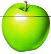 素材瓜果0277,素材瓜果,农业,青苹果 酸涩 成长