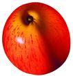 素材瓜果0278,素材瓜果,农业,俯视 纹理 光照