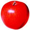 素材瓜果0279,素材瓜果,农业,酸甜 光泽 成熟