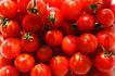 什锦鲜蔬0025,什锦鲜蔬,农业,西红柿 蔬菜 美味