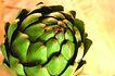 什锦鲜蔬0031,什锦鲜蔬,农业,绿色 外形 鲜蔬