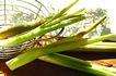 什锦鲜蔬0033,什锦鲜蔬,农业,篮子 蒿笋 食物