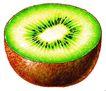 果脯0056,果脯,农业,营养瓜果 猕猴桃 新鲜绿色