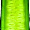 果脯0064,果脯,农业,黄瓜 瓜瓤 新鲜