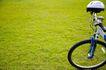 亲子休闲脚踏车0020,亲子休闲脚踏车,休闲,车头 草坪 浅草