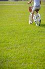 亲子休闲脚踏车0050,亲子休闲脚踏车,休闲,出游