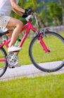 亲子休闲脚踏车0062,亲子休闲脚踏车,休闲,单车 骑车 运动