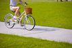 亲子休闲脚踏车0073,亲子休闲脚踏车,休闲,公园 水泥 小路