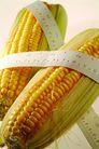 生化科技0086,生化科技,医疗,玉米 粮食 生化