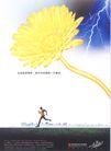 金融保险广告0019,金融保险广告,广告,闪电 速度 跑步 鲜花 晴空