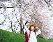 休息日家庭0056,休息日家庭,生活,樱花时节 踏青 背背包