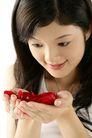 女人花0027,女人花,美容,清纯 手捧花朵 红花瓣
