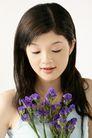 女人花0050,女人花,美容,紫色的花