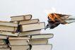 书籍0039,书籍,静物,