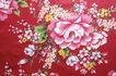 布纹蕾丝0030,布纹蕾丝,静物,植物 绽放 花纹