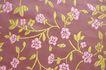 布纹蕾丝0039,布纹蕾丝,静物,颜色 枝条 小草