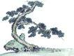 古树奇石0019,古树奇石,中国国画,苍松 弯曲 形状 姿态 迎宾松