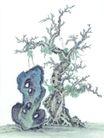 古树奇石0030,古树奇石,中国国画,