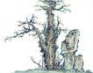 古树奇石0032,古树奇石,中国国画,风景 古树 古树