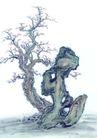 古树奇石0033,古树奇石,中国国画,奇石 自然 景观