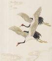 吉祥鸟0012,吉祥鸟,中国国画,飞舞 白鹤 仙鹤 丹顶鹤 飞翔