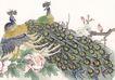吉祥鸟0032,吉祥鸟,中国国画,孔雀 收起尾巴