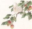 吉祥鸟0033,吉祥鸟,中国国画,果枝 鸟立枝头
