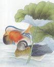 吉祥鸟0041,吉祥鸟,中国国画,