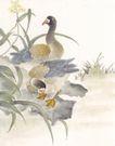 吉祥鸟0048,吉祥鸟,中国国画,