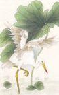 吉祥鸟0049,吉祥鸟,中国国画,