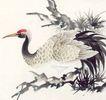 吉祥鸟0054,吉祥鸟,中国国画,