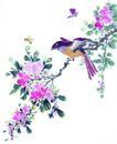 枝头飞乌0007,枝头飞乌,中国国画,翅膀 野花 飞鸟