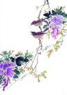 枝头飞乌0009,枝头飞乌,中国国画,鸣叫 藤蔓 构图