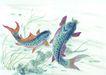 水族世界0021,水族世界,中国国画,鲤鱼 游水 池塘