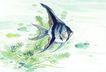水族世界0040,水族世界,中国国画,