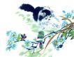 猫专辑0013,猫专辑,中国国画,遥望 树枝 小鸟