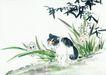 猫专辑0044,猫专辑,中国国画,